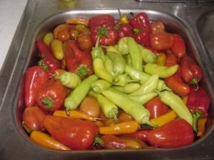 Pepper Prep