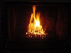First Fire 2008