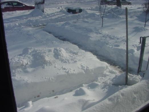 snow-december-2008