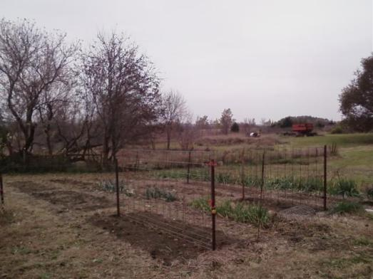 Cleared-out West Garden