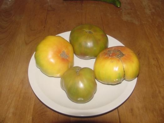 Hillbilly Potato Leaf & Ananas Noire